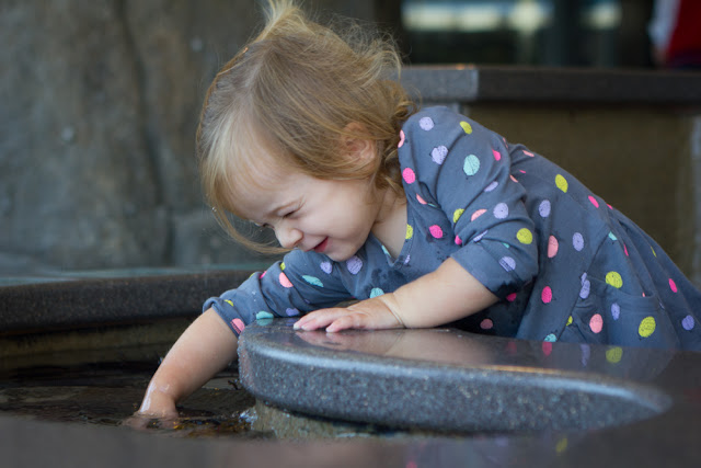 2015-09-03 Tilda playing in the water aquarium-10